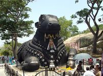 Wayanad And Mysore 4 Nights  Package