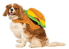 Delicious hamburger dog costume Easy to put on and comfortable to wear Small fits 14-inch chest and 11-inches neck to tail