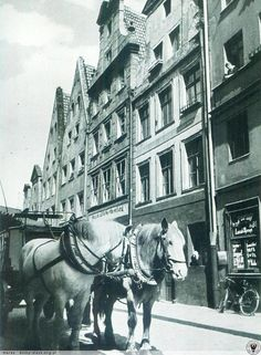 Ulica Białoskórnicza. Fot. Wolff & Tritschler.   Dodał: maras° - Data: 2014-05-13 22:23:32 - Odsłon: 580 Lata 1930-1940