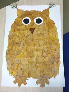 Sova z lístia_owl from leaves