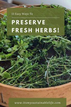 13 Ways To Preserve Fresh Herbs Herb Garden Design, Herbs Garden, Garden Pests, Fruit Garden, Gardening For Beginners, Gardening Tips, Preserve Fresh Herbs, How To Make Pesto, Organic Gardening