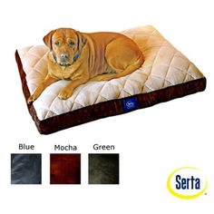 Serta Soft Pillowtop Pet Bed | Overstock.com