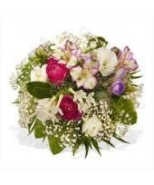 Avail the flower delivery services to Germany at cheap prices online  http://www.dailystrength.org/people/3396687/journal/10279767