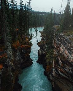 Athabasca Falls Alberta Canada | Photography by  @mattzoeteman. #OurPlanetDaily by ourplanetdaily