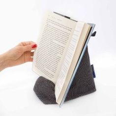 A nice, sober cushion bookrest. Have a grey one of my own. It makes my reading experiences so much more comfortable :-).