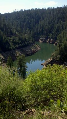 Blue Ridge Reservoir, Arizona - took the children here once and we paddled around in rubber rafts for several hours looking at the area from different places - great fun