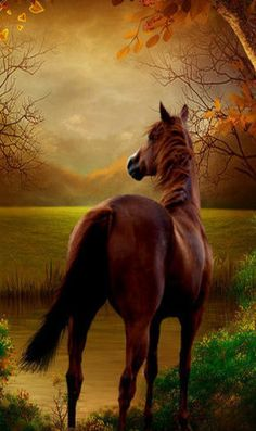 You love horses! Most Beautiful Horses, All The Pretty Horses, Animals Beautiful, Painted Horses, Easy Landscape Paintings, Watercolor Horse, Types Of Horses, Mundo Animal, All Gods Creatures