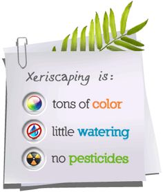 Xeriscaping is: not sure no pesticides falls under xeriscaping - but little water and color works....