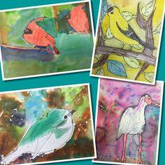 Georgia bird portraits in 3rd   Mrs. Knight's Smartest Artists   Bloglovin'