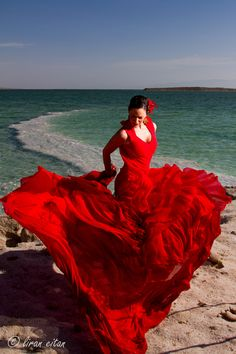 Flamenco dancer - by Liran Eitan