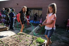 Third grader Claire Wilson, 8, waters fruits and vegetables after pulling weeds during a garden club Aug. 20 at Stetson Elementary School in Falcon School District 49. The club kicked off this month with the help of an Eagle Scout who constructed 12 raised-bed garden boxes. Teacher Matt Monfre said the after-school activity aims to decrease incidences of childhood obesity, increase intakes of fruits and vegetables and provide hands-on lessons in earth and life sciences.