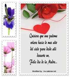 descargar frases bonitas para el dia de la Madre,descargar mensajes para el dia de la Madre: http://lnx.cabinas.net/mensajes-para-el-dia-de-la-madre/