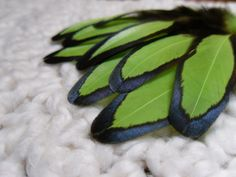 Lime Green Feathers Hen Craft Feathers by SolDoggie on Etsy, $5.80