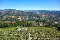 Vista do Miradouro de São Pedro - Fontes - Portugal