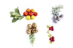 Hojas y frutos de madroño,majueloy cipreses, Sierra Madrona y la Atalaya. (Ciudad Real)