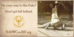 One week left to sign up for the Gala Dinner! In Two weeks we'll be getting ready to eat!! :) https://nadwcon2017.org/gala/2017-gala-dinner-ticket.html