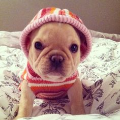 """❤ """"I was cold"""" ❤"""