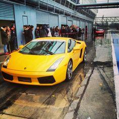 The Lamborghini Gallardo