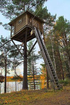 Treehouse Harads, Sweden