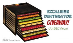 We seriously have the most amazing readers. We wanted to give back and wanted to do so in a big way. One lucky reader will win a 9-Tray Excalibur Dehydrator, valued at $250!