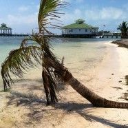 Super opportunity to own a property in paradise and earn guaranteed rental income for 3 years! Ambergris Caye, Family Resorts, Belize, Paradise, Country, 3 Years, Opportunity, Blog, Family Friendly Resorts