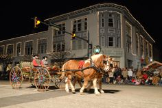 Lebanon Horse Drawn Carriage ~15 Magical Christmases in Ohio~