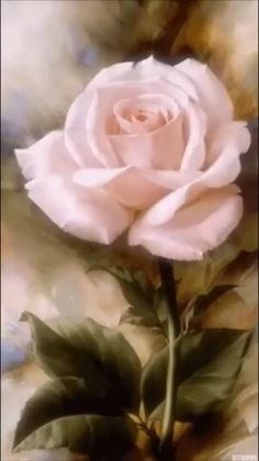 40 beautiful and realistic flower pictures as inspiration art painting Rose ~ by . Beautiful Flowers Wallpapers, Beautiful Rose Flowers, Beautiful Beautiful, Garden Drawing, Plant Drawing, Drawing Drawing, Art Drawings, Rose Art, Watercolor Flowers