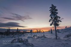 Winter sunset by mikkokarjalainen. Please Like http://fb.me/go4photos and Follow @go4fotos Thank You. :-)