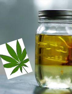 El aceite de cáñamo se está popularizando por sus propiedades medicinales y cosméticas. Investigaciones recientes dicen que ayuda a sanar las células de la piel y a prevenir el cáncer.