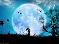 moon moon moon!
