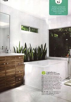 bath with built in planter