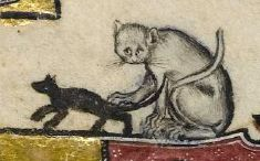 Cat (or is it a monkey) and mouse from the Macclesfield Psalter