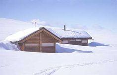Furu, værbitt: Denne Ålhytta har gravd seg ned i tide. Log Houses, Cabin, House Styles, Home Decor, Wood Cabins, Decoration Home, Cabins, Log Home, Log Cabin Homes