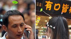 Fake sprouts growing out of your head is now a thing in Beijing.