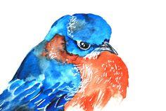 Watercolor Painting Original Art Blue Bird 9x12 by WoodPigeon