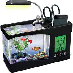 Fish tank organizer. Every office needs a mascot! Here's where to put yours. Desk Organizer. Pencil holder. Office. Cubicle.