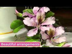 Alan Dunn - Tropical Sugar flowers trailer - YouTube