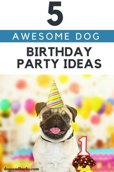 Since every dog should have his day, we think that a fun dog party could be a great way to celebrate the joy and love that our doggies gives. Check out 5 Awesome dog party ideas here. Extra Large Dog House, What Dogs, Dog Cookies, Puppy Party, Pet Travel, Dog Birthday, Happy Dogs, Dog Care, Fun Dog
