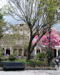 Park Cuenca Ecuador - with some of the beautiful Colonial Architecture. Cuenca Ecuador, Ecuador Map, Quito, Wonderful Places, Beautiful Places, Chili, Andes Mountains, Equador, Argentine