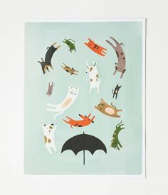raining cats and dogs print