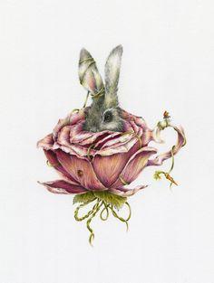Very Alice in wonderland meets Beatrix potter. Beatrix Potter, Lapin Art, Et Tattoo, Marjolein Bastin, Illustration Art, Illustrations, Bunny Art, Vintage Easter, Vintage Roses