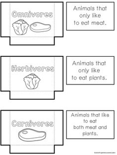 herbivores omnivores and carnivores sort activity tpt science lessons preschool science. Black Bedroom Furniture Sets. Home Design Ideas