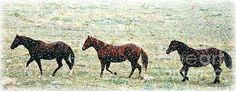 http://fineartamerica.com/featured/horses-in-snow-fall-barbara-chichester.html#comment10327565