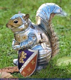animals, animal funnies, medieval times, pet, chipmunks, nut, past life, squirrel, knight