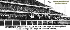 Harness Racing, Thoroughbred Horse, Alberta Canada, Horse Racing, Back In The Day, The Past, Horses, Sky, History
