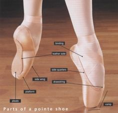 Parts of a pointe shoe!