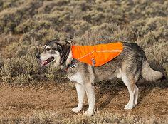Ruffwear Track Jacket™ High Visibility Dog Coat