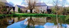 Propriété sur rivière avec Chambre d'hôtes / Gite à vendre à Nouatre en Touraine