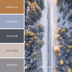 Farben Aerial Photography of Road in Forest Color Palette – Ave Mateiu Laminate Flooring While Color Schemes Colour Palettes, Colour Pallette, Color Combos, Rust Color Schemes, Rustic Color Palettes, Interior Design Color Schemes, Apartment Color Schemes, Design Palette, Color Palette For Home