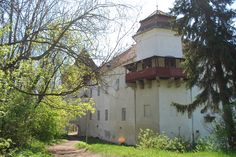 The Castle from Brâncovenești ( 30km )